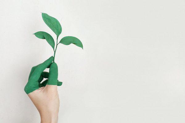 Hand mit grüner Farbe und Blatt