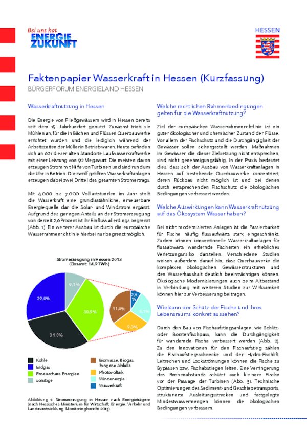 Faktenpapier Wasserkraft in Hessen - Kurzfassung