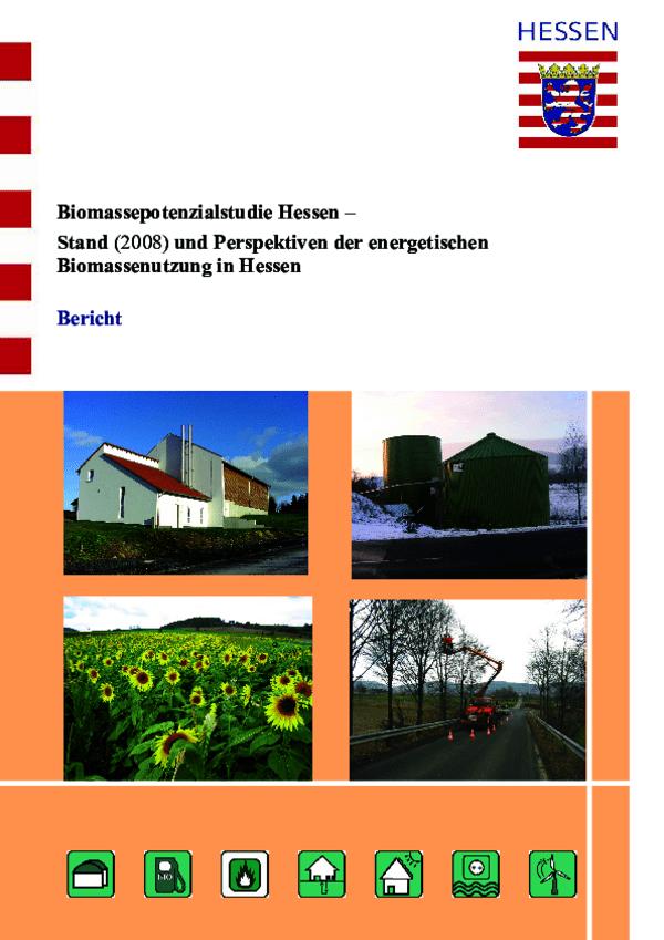 Biomassepotenzialstudie Kurzbericht 2008
