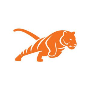 TIGER MARKETING Group GmbH