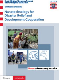Nanotechnology for Disaster Relief and Development Cooperation